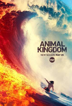 Animal Kingdom season 4 download free (all tv episodes in HD)