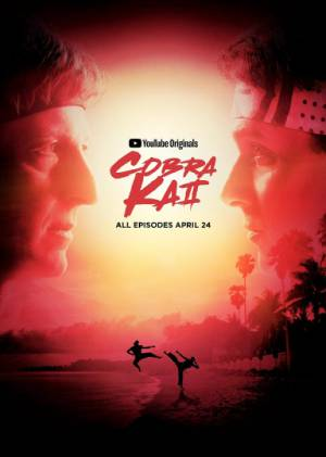Cobra Kai season 2 download free (all tv episodes in HD)