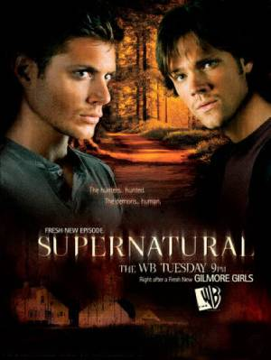 Supernatural season 5 download free (all tv episodes in HD)