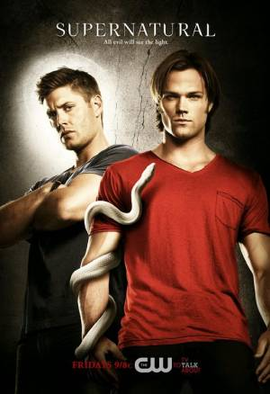 Supernatural season 6 download free (all tv episodes in HD)