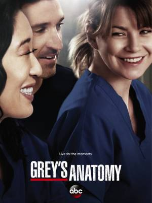 Grey's Anatomy season 10 download free (all tv episodes in HD)