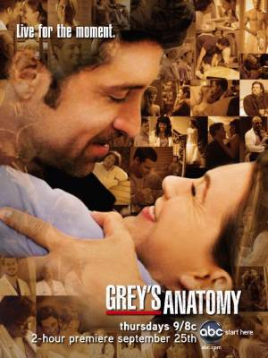 Grey's Anatomy season 5 download free (all tv episodes in HD)