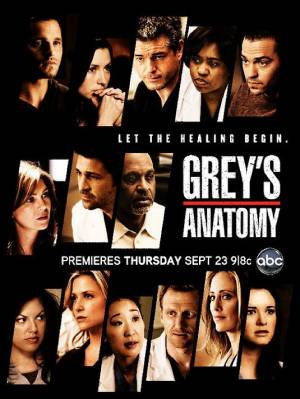 Grey's Anatomy season 12 download free (all tv episodes in HD)