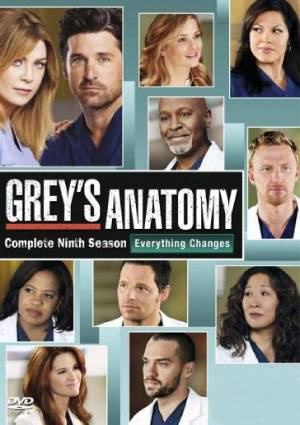 Grey's Anatomy season 9 download free (all tv episodes in HD)