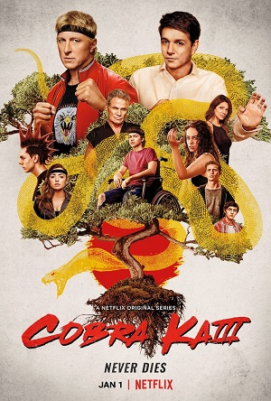 Cobra Kai season 3 download (tv episodes 1, 2,...)