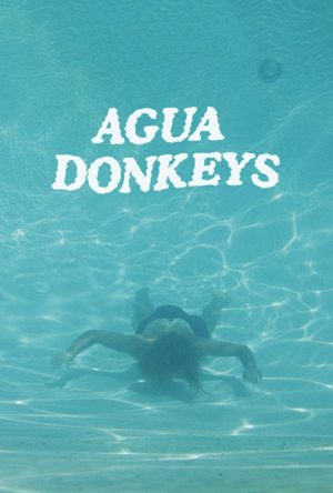 Agua Donkeys season 1 download (tv episodes 1, 2,...)