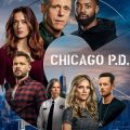 Chicago P.D. season 8 download (tv episodes 1, 2,...)